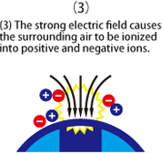 (3) The strong electric field causes the surrounding air to be ionized into positive and negative ions.